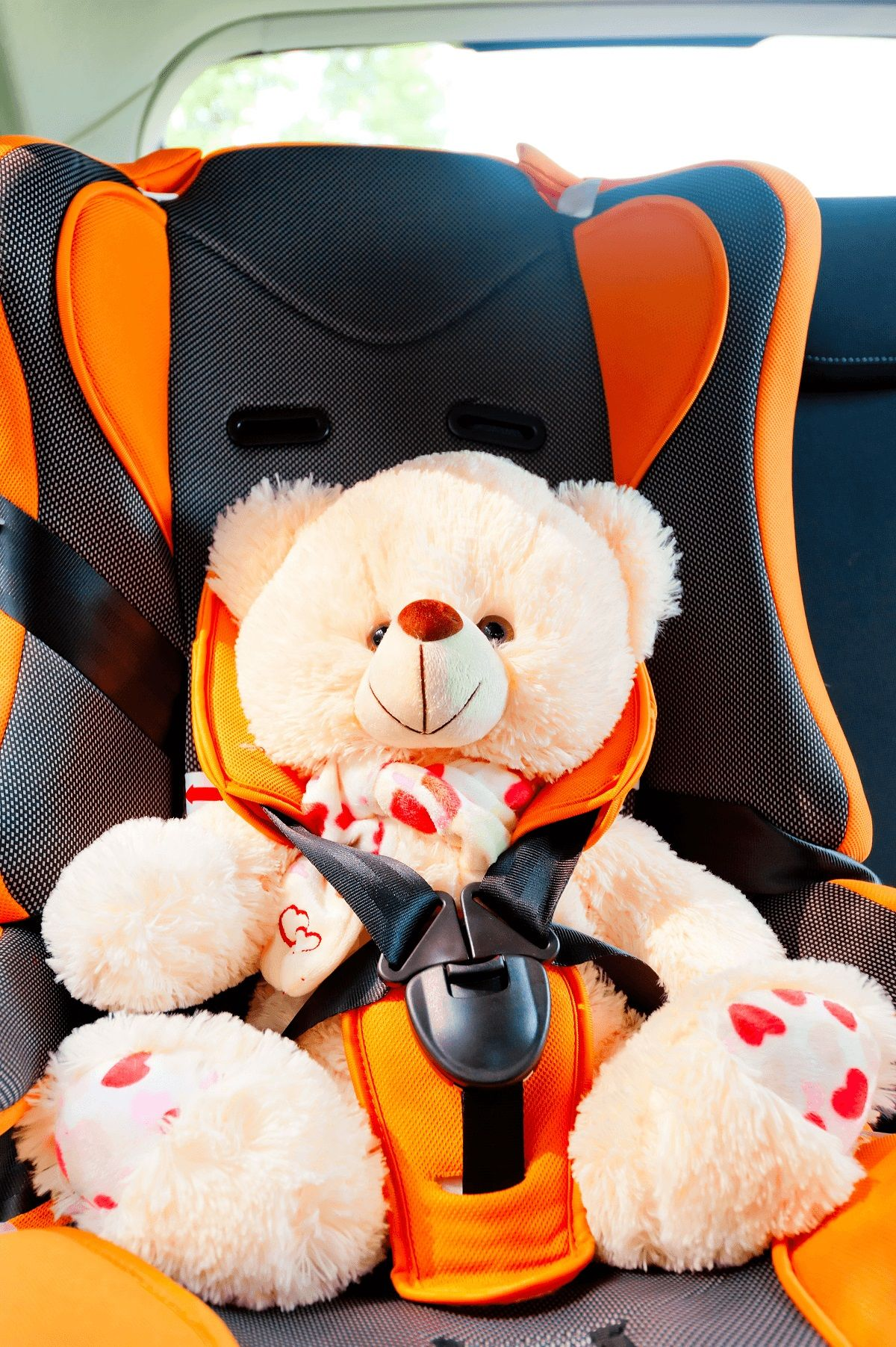 Child-Seat-with-teddy.jpg