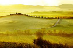 Road in Tuscany region at sunrise